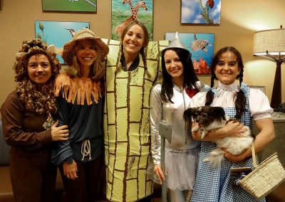 The Yellow Brick Road, Cowardly Lion, Scarecrow, Tin Man, Dorothy and Toto.